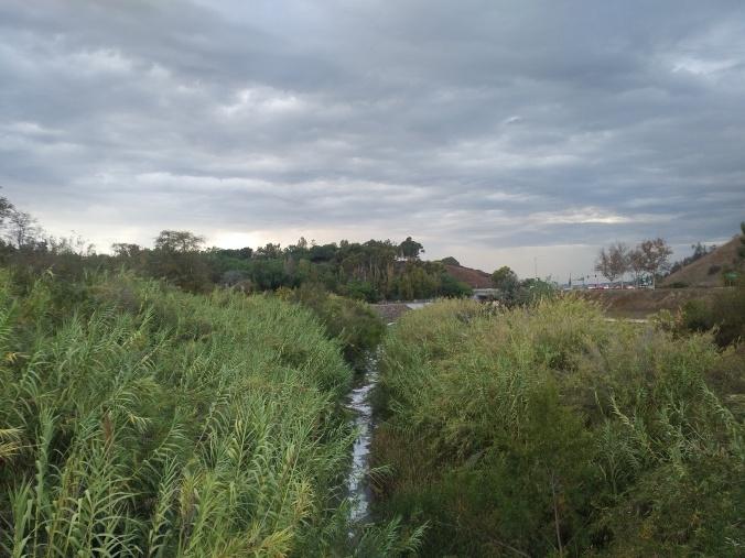 aliso-creek